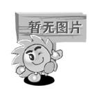 墙排式大奖网020彩票app的介绍